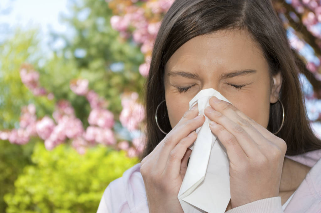 Allergiások, elő a samponnal – a haj az egyik legfőbb pollenraktár