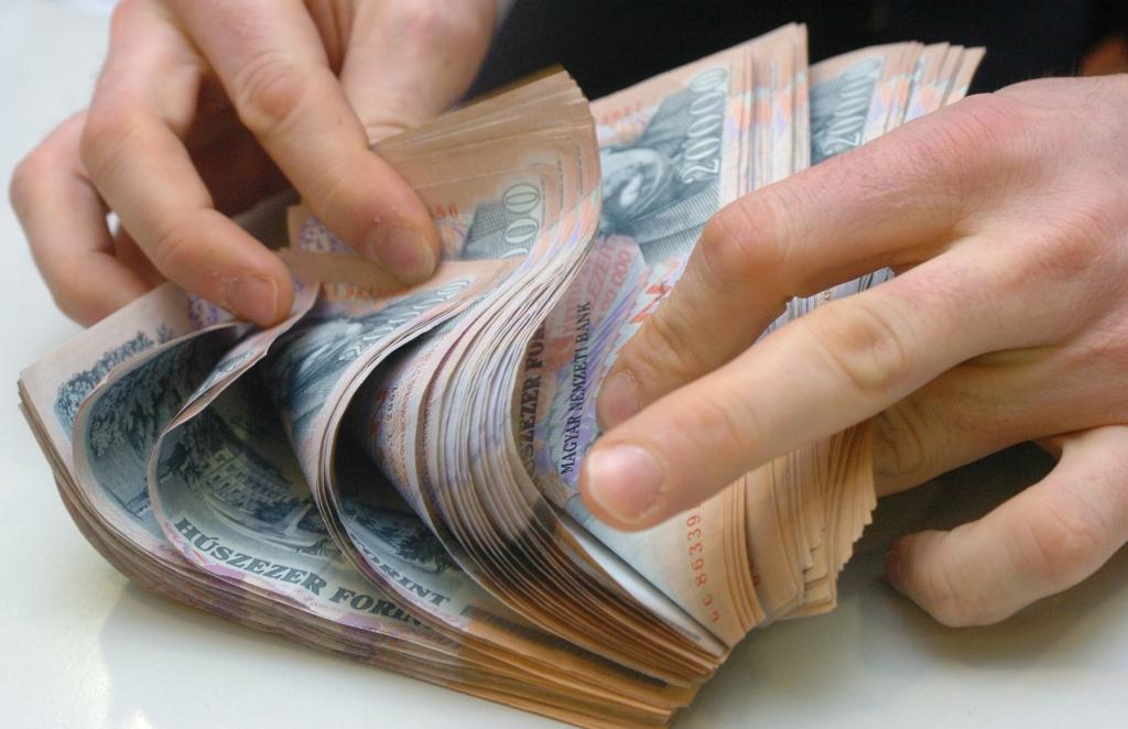 Pénz bankjegy forint húszezer forint  20090321  Fotó: Marton Szilvia / Napi Gazdaság