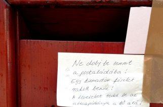 Cetliken üzengetnek egymásnak az egriek - Fotó: Nemes Róbert