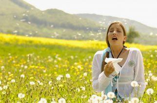 Jön az allergia szezon -  Fotó: mtlblog.com