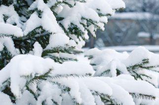 Túl vagyunk az idei tél első nagyobb havazásán