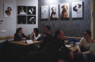 Ezer arcú kutyáink – szépek, viccesek, fotóik pedig jótékony célokat is szolgálnak