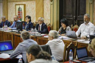 Megszavazta a közgyűlés az ingyenes bárányhimlő elleni védőoltást