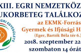 XIII. Egri Nemzetközi Cukorbeteg Találkozó