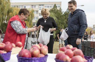 Másfél tonna almát osztottak szét Egerben – videó