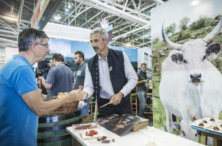 Magyar siker Torinóban – az egerszóláti szürkemarha a Slow Food Presidia minősítés küszöbén