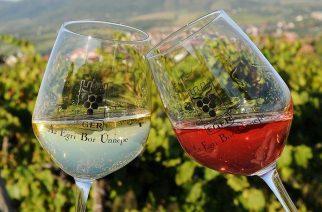 Egri borokkal csábítjuk hazánkba a turistákat!