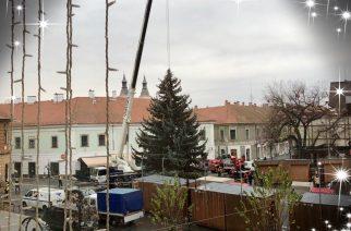 Közeleg a karácsony – már a Dobó téren Eger karácsonyfája