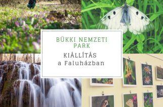Bükki Nemzeti Park – fotókiállítás a Felsőtárkányi Faluházban
