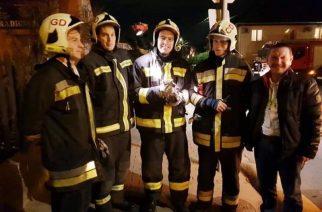 Napi cuki: csatornafedél alá szorult kismacskát mentettek a tűzoltók