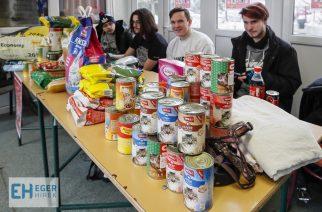 160 kiló eledelt gyűjtöttek a Keri diákjai a menhelyi állatoknak karácsonyra – videó