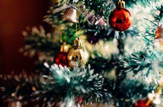 A te karácsonyfád a legszebb? Mutasd meg mindenkinek és nyerj borválogatást!
