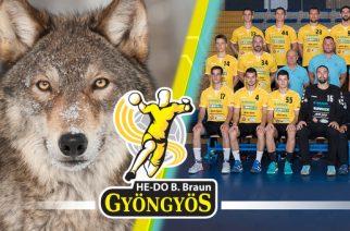 Döntöttek a szurkolók: A farkas lett a HE-DO B.Braun Gyöngyös hivatalos kabalafigurája!