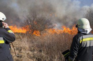 Tűzgyújtási tilalmat rendelt el Heves megyében is a földművelésügyi miniszter