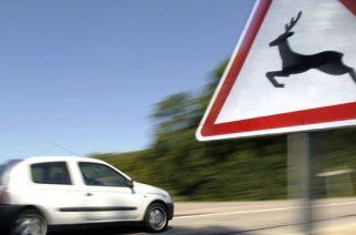 Ahol kint van a tábla, fokozott óvatossággal kell közlekedni.
