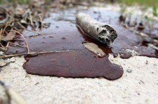 Olajszennyezőt keresnek a hatóságok!