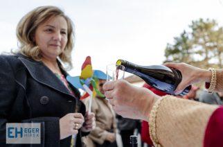 Tortával és borral ünnepelt Eger: két éve hungarikum az Egri Bikavér – Videó