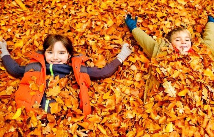 Jövő héten országszerte kitör az általános őszi szünet   EgerHírek